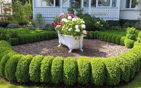 5 inexpensive modern landscaping ideas