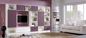 White Living Room Storage Cabinets Home Design 89 Wonderful Living Room Storage Furnitures