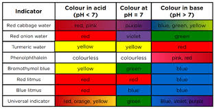 Red Cabbage Juice Indicator Chart Indicators Acids Bases And The Ph Value Siyavula