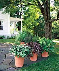 Use potted plants to define an outdoor space: Here, they separate patio  from lawn.