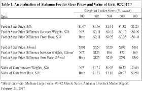 Steer Feeding Chart At What Weight Should I Sell My Feeder Calves Panhandle