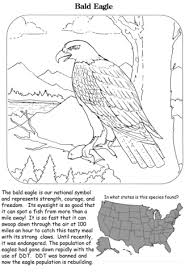 Small Picture Bald Eagle coloring page Free Printable Coloring Pages