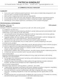 Sample Resume E-commerce Project Manager P1 ...