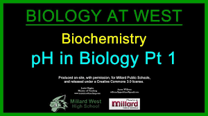ph in biology pt biochemistry ph in biology pt 1 biochemistry