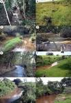 imagem de Ribeirão do Pinhal Paraná n-19