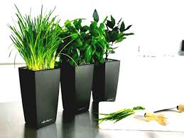 outstanding modern large indoor plant pots full size of designer planters astonishing uk articles with outdoor