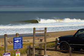 Update Cape Cods Great White Shark Situation Surfline