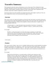 Executive Summary Word Template Business Plan Free Templates