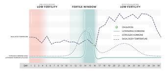 Lh Surge Timing Symptoms And Ovulation Mira Fertility