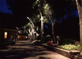 landscape lighting trees. Delighful Trees For Landscape Lighting Trees