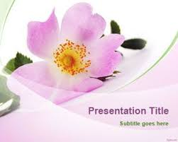 Ppt Flowers Free Single Flower Powerpoint Template
