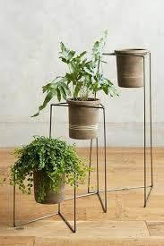 modern plant stands indoor plant stands indoor and with flower plant stand and with garden shelf plant stand and with modern plant stands indoor uk