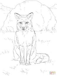 Sitting Red Fox coloring page | Free Printable Coloring Pages