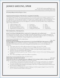 Nursin Resume 9 Examples Of Professional Summary For Nursing Resume