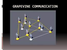 Image result for pros and cons about the grapevine