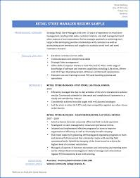 Computer Literacy Skills Examples For Resume Analyst Resume Example Resume For Skills Financial Analyst Resume 35