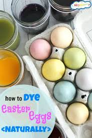 Dye Brown Eggs With Food Coloring How To Skip My – Salvatorecolazzo