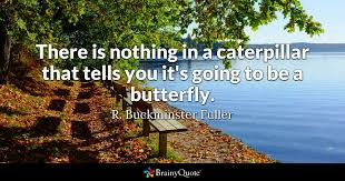 Butterfly Quotes Mesmerizing There Is Nothing In A Caterpillar That Tells You It's Going To Be A