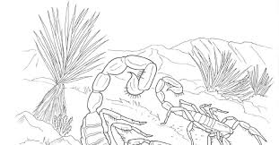 Small Picture Desert Coloring Pages chuckbuttcom