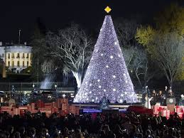 Barack And Michelle Obama Light National Christmas Tree For