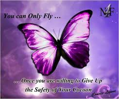 Butterfly Quotes Magnificent Butterfly Quotes Butterfly Sayings Butterfly Picture Quotes