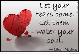 Broken Heart Images Dp Whatsapp English Status Image Quotes