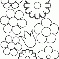 Find & download free graphic resources for floral pattern. Different Kinds Of Petal Patterns