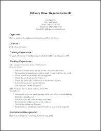 Pizza Delivery Driver Job Description For Resume Nmdnconference