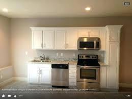 basement apartment design ideas. Small Basement Apartment Ideas Best About Apartments On Decor . Design N
