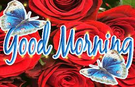 good morning good wishies good morning gif