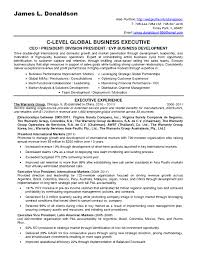 Sample Resume Of A Business Development Consultant New Bunch Ideas