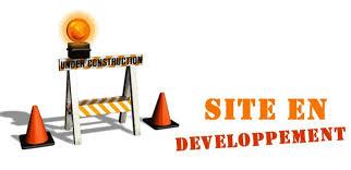 """Résultat de recherche d'images pour """"site en construction wordpress"""""""