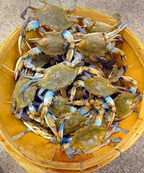Crab Size Chart Nj How To Buy Crabs Baltimore Sun