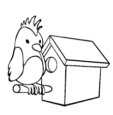 Small Picture Parrot Bird House Coloring Pages Parrot Bird House Coloring Pages