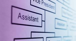 Dmv Organizational Chart What Is The Purpose Of An Organization Chart Reference Com
