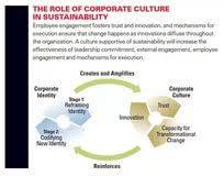 corporate culture essay transdermal drug delivery system thesis corporate culture essays