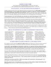Vice President Sales Resume Vice President Marketing Resume
