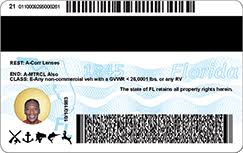 Highway - Safety Of New Motor Driver License Department Id Florida's Florida Vehicles And Card