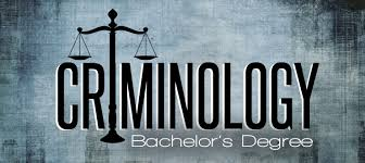 Image result for online courses in criminology