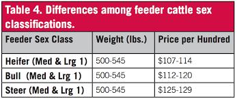 Steer Feeding Chart Feeder Calf Grading Fundamentals Uga Cooperative Extension