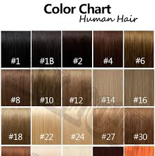 Color Chart For Hair Color Human Hair Color Chart Extensions 31 Colors Hair Colour Chart Human Hair Color Ring Hair Extension Color Ring