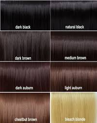 Shades Of Brown Hair Color Chart