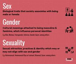 sociology of gender the other sociologist sex gender and sexuality sociology definitions by othersociology com