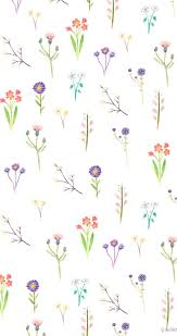 Flower drawing, Wildflower drawing ...
