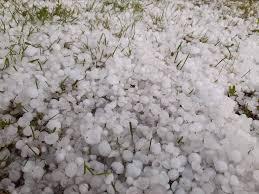 Oggi la grandine ha colpito... - Meteo Altopiano di Asiago