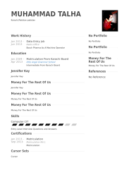 Simple And Easy To Use Data Entry Resume Sample With Two Column Format