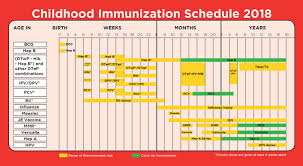 Age Chart For Shots Childhood Immunization Schedule List Of Vaccines For