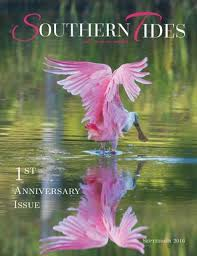 Ssi Ga Tide Chart Southern Tides September 2016 By Southern Tides Magazine Issuu