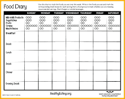 Food Journal Daily Diary Templates Download Template For Resume Log