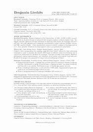 Personal Profile Resume Examples Nice Xample Resume Summary Cv